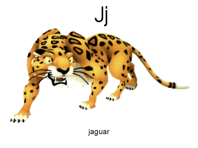 J Is For Jaguar By Brian Draney