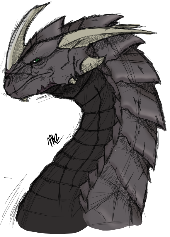 Dragon Sketch #1 - Fayne by 5-Tails