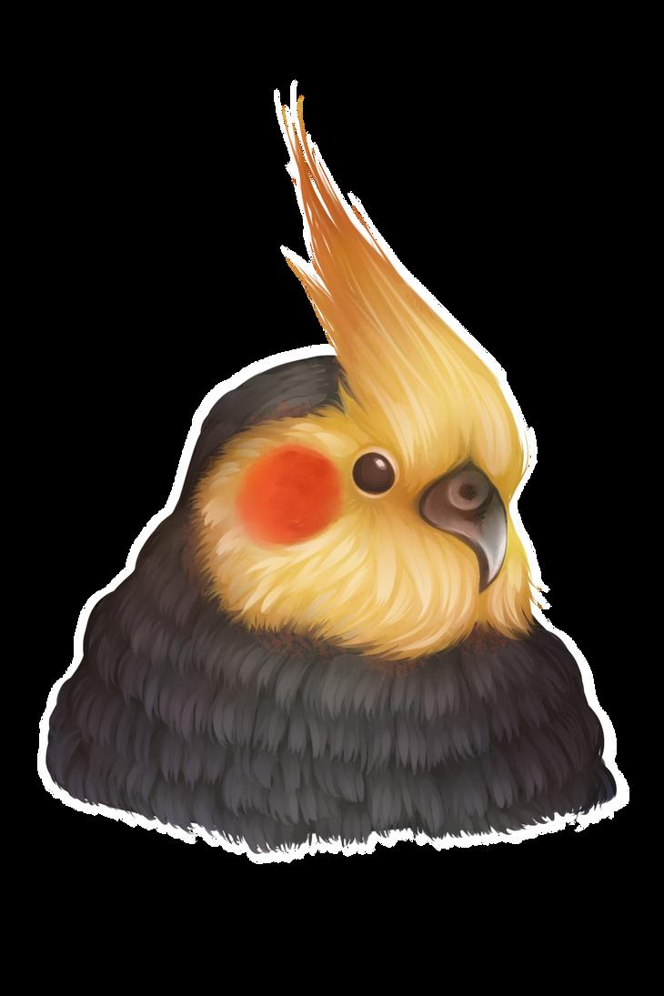 Cockatiel by EvilDoritoTriangle