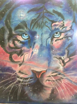 Galaxy of the Tiger