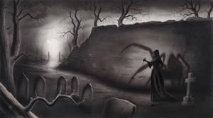 Black Widow by RainerKalwitz