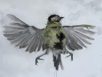 Bird by internetontheblink43