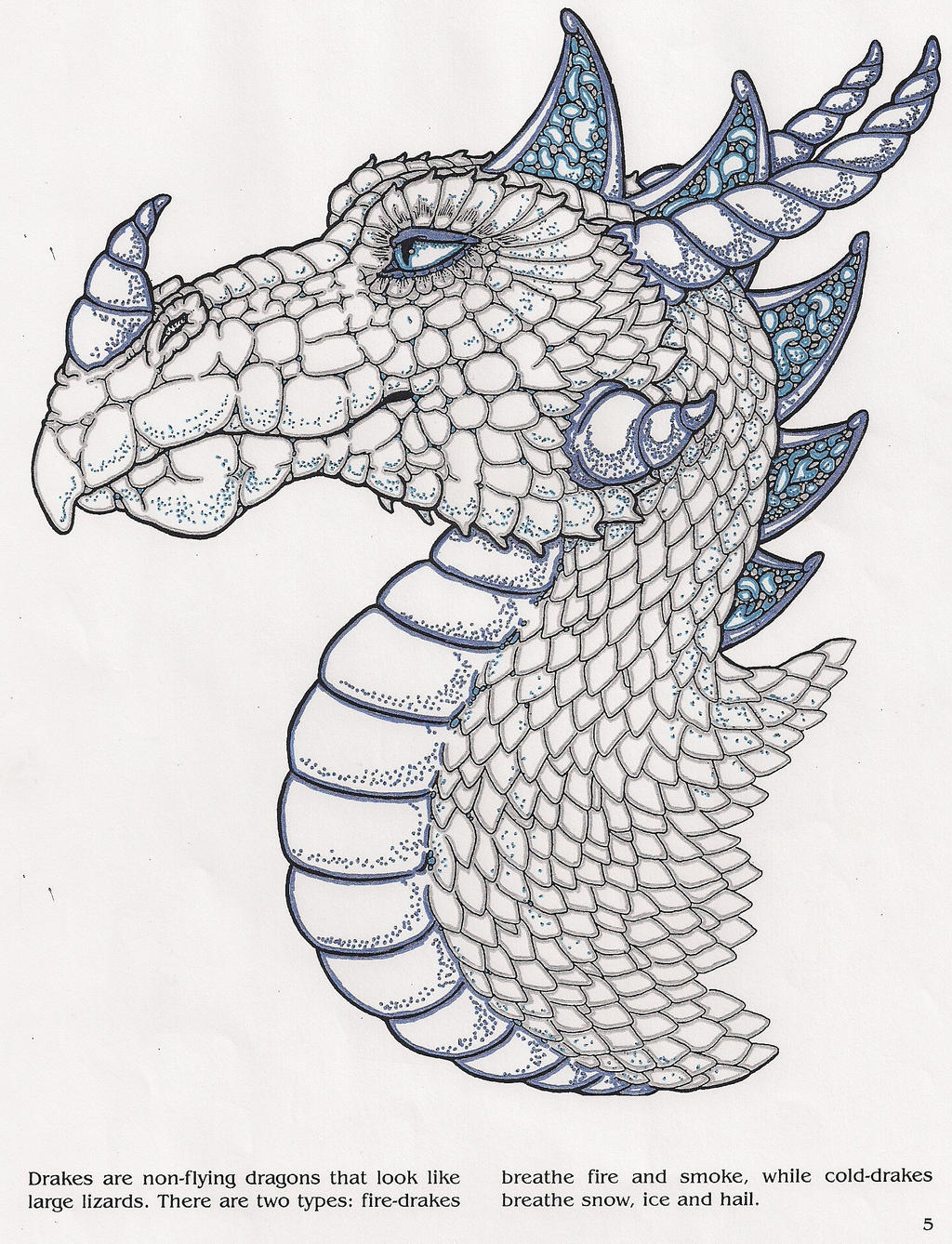 frost drake coloring page 2 by phoenix2890 - Drake Coloring Book