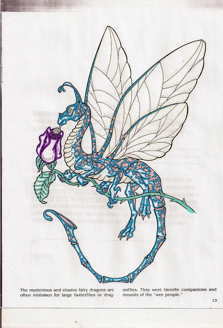 fairy dragon coloring pages - photo#27