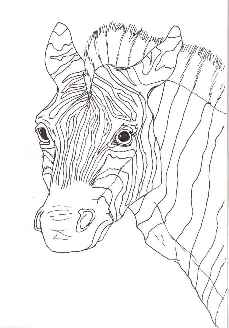 Line Art Zebra : Zebra line art by canislupes on deviantart