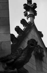 gargoyle by lyliblue
