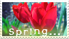 'Spring . . . ' Stamp. by ECC500