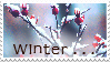 'Winter . . .' Stamp. by ECC500
