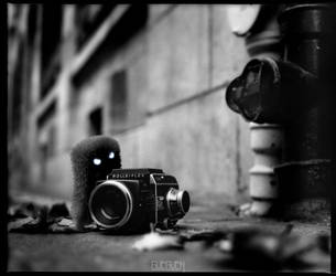 THE BAD ROLLEIFLEX by LEQUARK