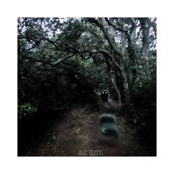 THE BAD LITTLE PATH by LEQUARK