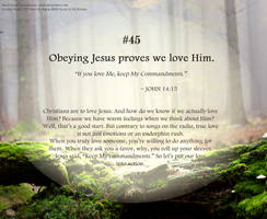 Bible Refresher 50 - Trust And Obey by PoppyCorn99