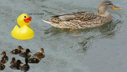 Duckies by theforcesofevil1