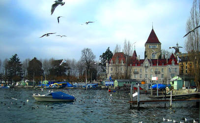 Lake Geneva, Lausanne by Rhododendron