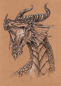 Portrait of a Dragon Queen