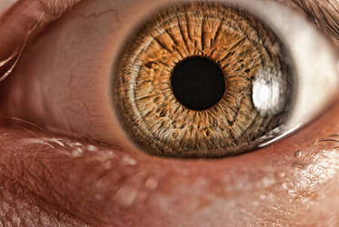 Second Attempt eye macro by lRareRubyl