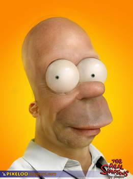 Homer Untooned