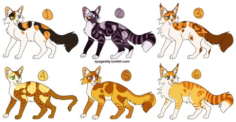 [1/6 OPEN] Patched Kitty Cat Adopts