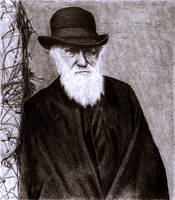 Charles Darwin by SophieReddyArt