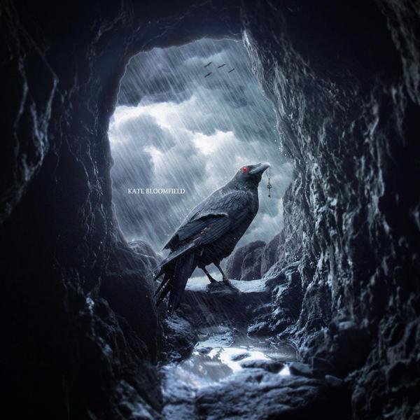 Rescue Raven by KateBloomfield