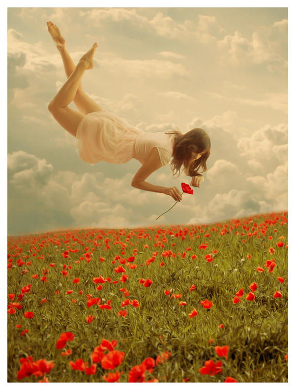 Floating over the Poppy field