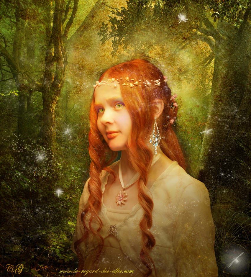 Za poeziju - Page 5 The_elf_princess_by_wiccancountess08-d3laqnd