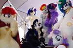 Ponysuits