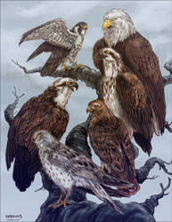 It's a Raptor Convention by Kiriska