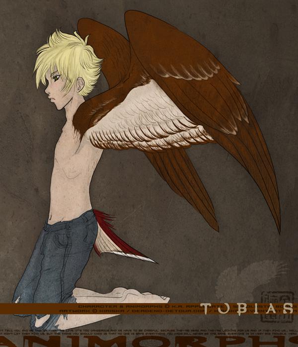 The Bird-Boy by Kiriska