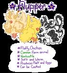  Flupper General Information 