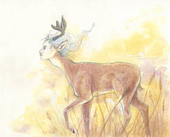 The deer, at dusk by emera