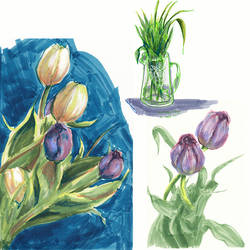 Tulips, three ways