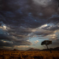 Waiting for the Rain by tholang