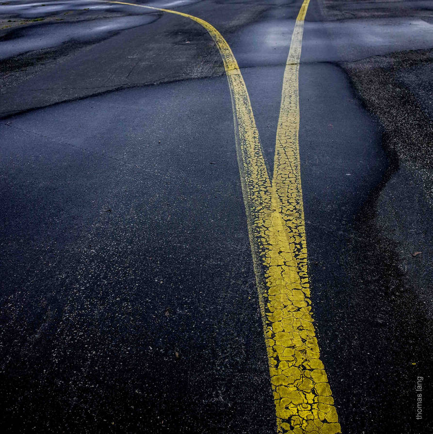 Which Way? by tholang