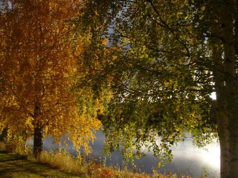Autumn Riverside3