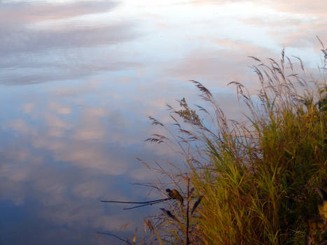 Autumn Riverside4