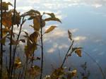 Autumn Riverside7
