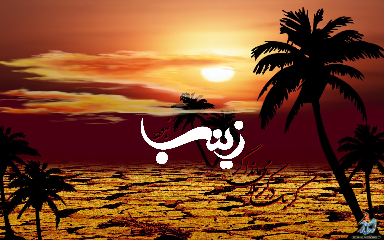 http://fc09.deviantart.net/fs71/f/2009/360/2/5/hazrate_zeinab_by_asr_entezar.jpg