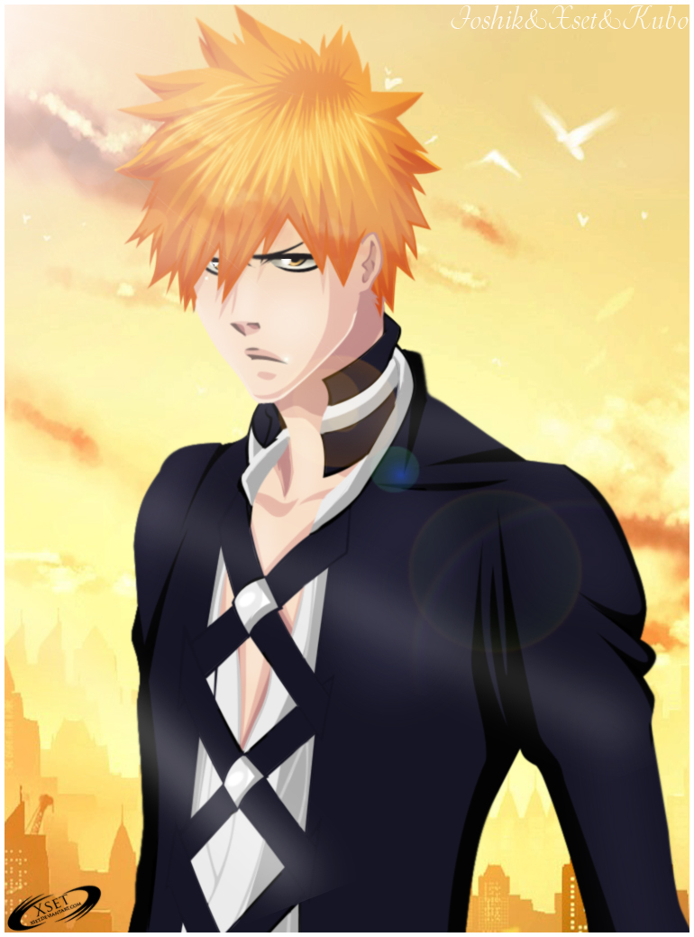 Bleach 565: Ichigo's BanKai by Xset