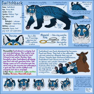 Switchback Reference v.3 (Not my art!!)