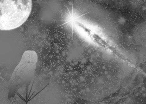 Nights Dream by Spootyhead