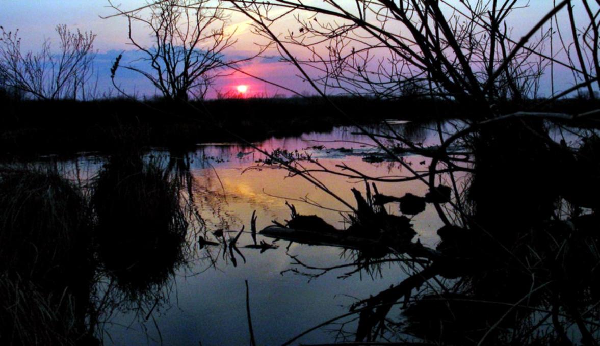 November 2st Sundown In Arcipelago by eskile