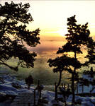 The Colorful January Archipelago Landscape  by eskile