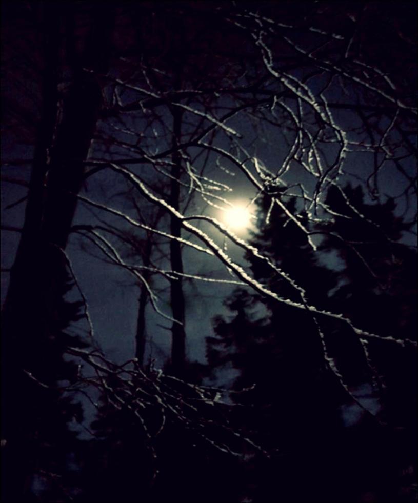 Winter Magic Night by eskile