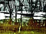Spring Water Mirroring