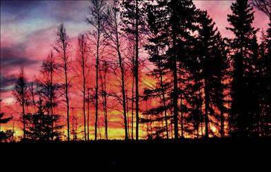 Spectacular Sunset On October 30    by eskile