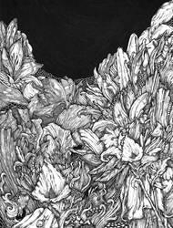 Foliage by DavidR-XV