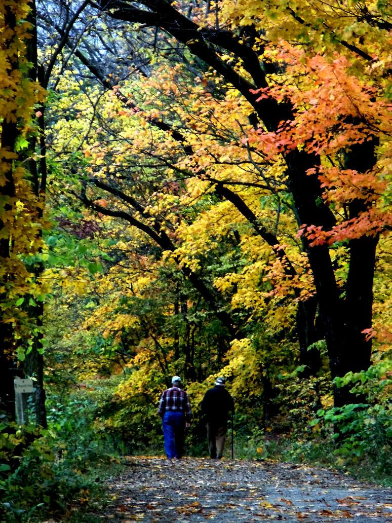 A Walk Amongst Friends by redxheadxgurl