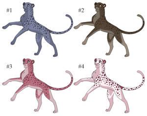 Cheetah Adopt Set 1 [3/4 open - 80 points]