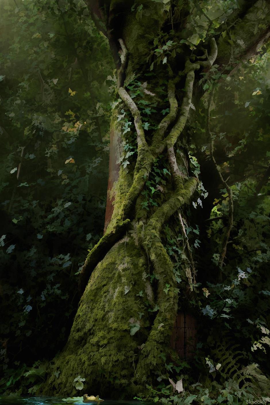 Worksheet Fairy Tree deviantart more like fairy tree yeah i know but it is by bkhook bkhook