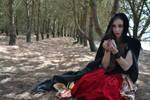 Fairytale 65